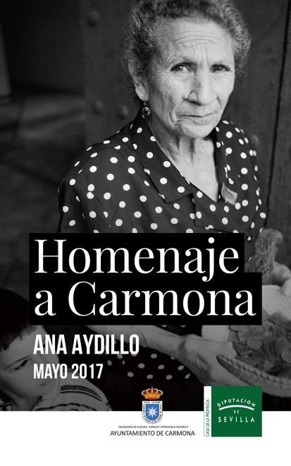 Exposición Homenaje a Carmona en la Diputacion de Sevilla.2017.